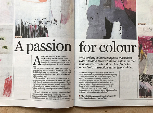 passsion for colour